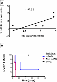 modification si e social association modification of host dendritic cells by microchimerism derived