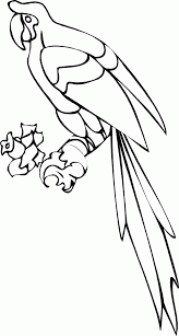 parrot pictures free coloring