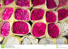 roses for sale roses for sale royalty free stock photo image 31072995