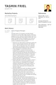 Pmo Cv Resume Sample by Senior Program Manager Resume Samples Visualcv Resume Samples