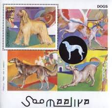 afghan hound club of st louis afghan hound stamps