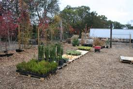 landscaping clarksville tn landscaping consulting