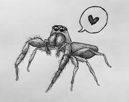 Spider Bro Meme - jo calls crows love at first sight with trite aspiring doctors