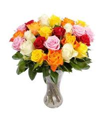 multicolored roses 22 stem multicolored roses order the best flowers online in