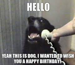 Best Happy Birthday Meme - what s the best happy birthday memes just for fun discussion