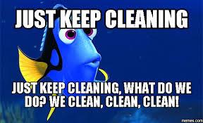 Cleaning Meme - what do we do at meticulous ladies we meticulous ladies