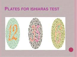 Medicine For Color Blindness Colour Blindness Ppt By Meera Qaiser