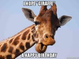 Meme Giraffe - i hope giraffe a happy birthday make a meme