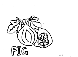awesome fig coloring pages for kids book club crafts pinterest