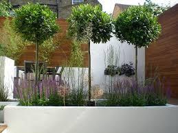 21 best caroline u0027s garden images on pinterest garden ideas