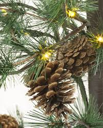 led pinecone trees balsam hill