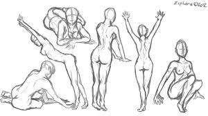 anatomy image organs awesome image female anatomy for artist