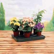 self watering large self watering plant tray gardening trays greenhouse