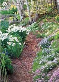 Landscaping Wood Chips by 24 Best Woodsy Walks Images On Pinterest Landscapes Landscaping