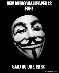 Anonymous Meme - removing wallpaper is fun said no one ever anonymous make a