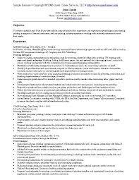 resume example 10 resume cv