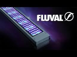 fluval led light 48 fluval led aquarium lighting full range youtube