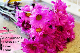 fresh cut flowers best fresh cut flower food plus tips on why it works