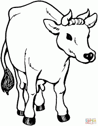 coloring pages kids cow coloring page 30 cow coloring pages farm