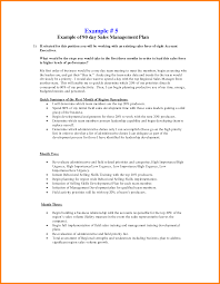 business assessment report template 9 30 60 and 90 day plan template resume language business