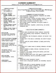 Resume Samples For Administrative Assistant by Cto Resume Examples Sample It Director Resume It Director Sample
