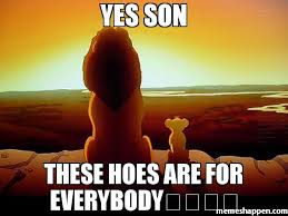 Hoes Be Like Memes - yes son these hoes are for everybody meme lion king 35614