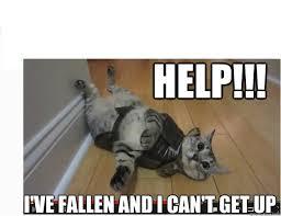 Help I Ve Fallen Meme - help i ve fallen and i can t get up nylah kitty ive fallen