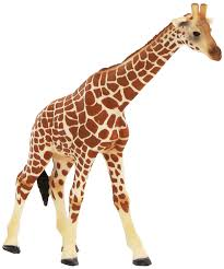 amazon com schleich female giraffe toys u0026 games