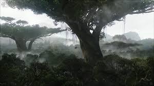 image rainforest on pandora desktop wallpaper wallpaper avatar