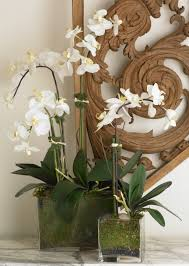 faux orchids faux phalaenopsis orchids in moss lined glass vessels complete