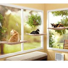 Cat Window Sill Perch Compare Prices On Pet Seat Hammock Online Shopping Buy Low Price