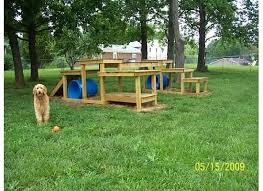 Building A Backyard Playground by Best 25 Dog Playground Ideas On Pinterest Agility Training Dog