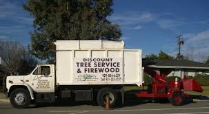 discount tree service closed tree services 257 w 58th st