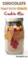 mason jar christmas cookie recipes christmas lights decoration