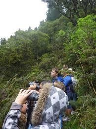 Kula Pumpkin Patch 2014 by Field Trips For Our Keiki Maui Family