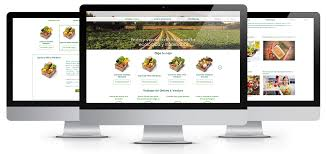 fruit delivery company e shop for a company providing organic fruit and vegetable