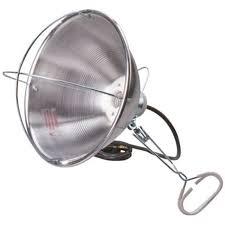 heat lamp nemco ceiling mount single bulb heat lamp 6ft