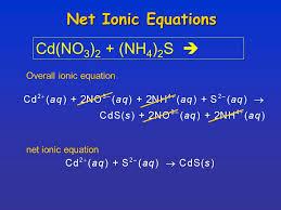 chapter 13 section 1 dissociation ionization electrolytes u0026 net