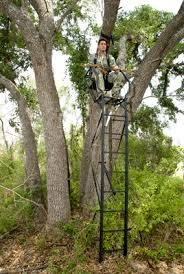 Tree Trunk Hunting Blind Hunting From Blinds And Stands U2014 Texas Parks U0026 Wildlife Department