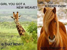 Weave Memes - girl is that a new weave memes
