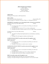 chronological resume outline first resume template first