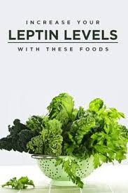 menus for the leptin diet to lose diet and no matter what