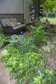 gardening garden plan a week week 4 my shade garden