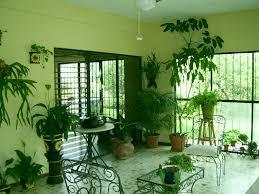 Plants For Home Decor Interior Classy Green Living Room Decoration Ideas Using Light
