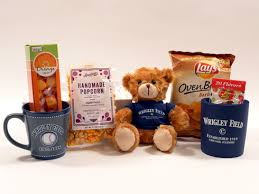chicago gift baskets chicago cubs gift basket plush cubby and gourmet snacks