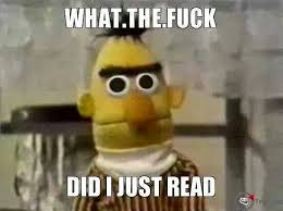 What The Fuck Did I Just Read Meme - 22 meme internet what the fuck did i just read bert
