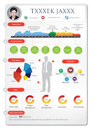 infographic resume infographic resume visual ly