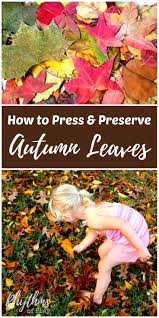 how to press and preserve fall leaves rhythms of play