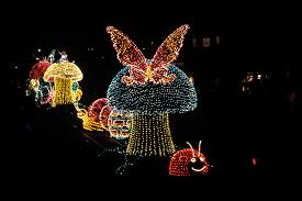 electric light parade disney world step in time main street electrical parade lights up magic