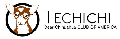 te chichi history of techichi techichi s deer chihuahua